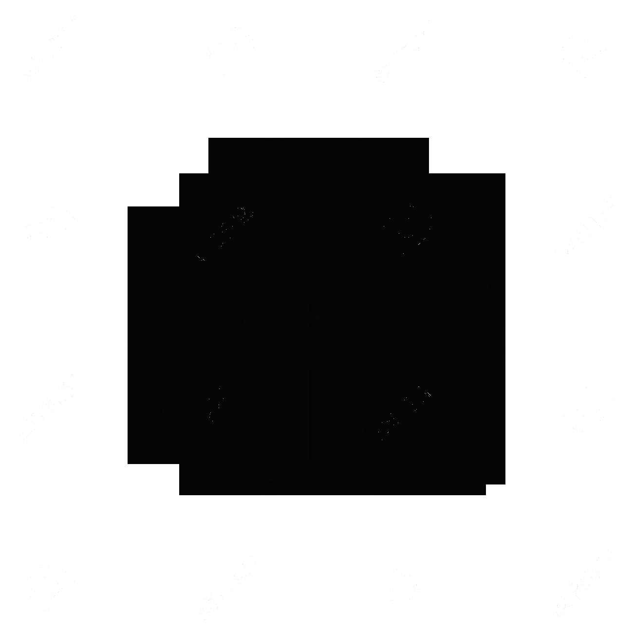 brain_icone_black
